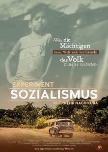Index l a1 poster experiment sozialismus grey brown e1574000323192